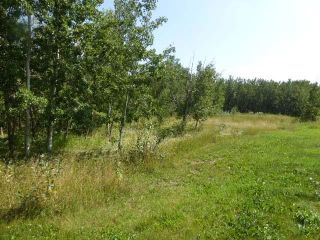 Photo 12: 40 26555  Twp 481: Rural Leduc County Rural Land/Vacant Lot for sale : MLS®# E4258053