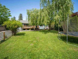 Photo 3: 22127 CLIFF Avenue in Maple Ridge: West Central House for sale : MLS®# R2583269
