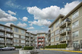 Photo 1: C216 20211 66 Avenue in Langley: Willoughby Heights Condo for sale : MLS®# R2532757