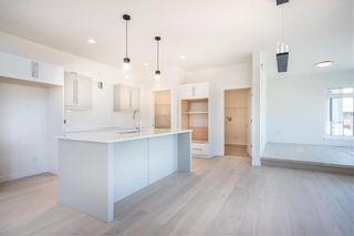 Photo 8: 173 Springwater Road in Winnipeg: Bridgwater Lakes Residential for sale (1R)  : MLS®# 202012035