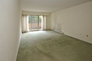 """Photo 3: 204 1260 W 10TH Avenue in Vancouver: Fairview VW Condo for sale in """"LABELLE COURT"""" (Vancouver West)  : MLS®# R2615992"""