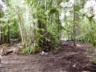 Photo 2: Lot 49 Vickers Trail in Anglemont: Land Only for sale : MLS®# 9185776