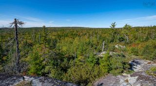 Photo 15: 2014 Myra Road in Porters Lake: 31-Lawrencetown, Lake Echo, Porters Lake Vacant Land for sale (Halifax-Dartmouth)  : MLS®# 202125407