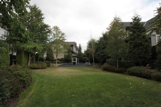 """Photo 13: 47 21867 50 Avenue in Langley: Murrayville Townhouse for sale in """"Winchester"""" : MLS®# R2201654"""