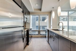 Photo 5: 304 530 12 Avenue SW in Calgary: Beltline Apartment for sale : MLS®# A1113327