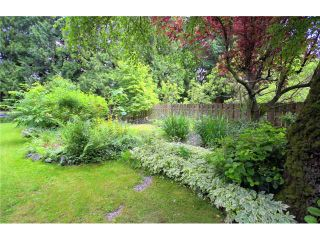 Photo 10: 6549 PARKDALE DR in Burnaby: Parkcrest House for sale (Burnaby North)  : MLS®# V838877