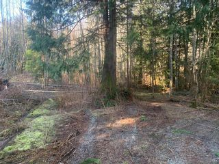 Photo 10: 2740 Phillips Rd in : Sk Phillips North Land for sale (Sooke)  : MLS®# 861867