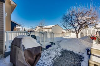 Photo 14: 100 Martinwood Road NE in Calgary: Martindale Detached for sale : MLS®# A1071596