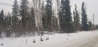 Photo 4: LOT 2 S MCBRIDE TIMBER Road in Prince George: Upper Mud Land for sale (PG Rural West (Zone 77))  : MLS®# R2543587