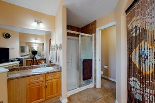 Photo 24: 20820 55 Avenue in Edmonton: Zone 58 House for sale : MLS®# E4251212
