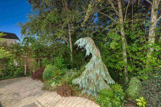 "Photo 37: 10508 BAKER Place in Maple Ridge: Albion House for sale in ""MapleCrest by Genstar"" : MLS®# R2491556"