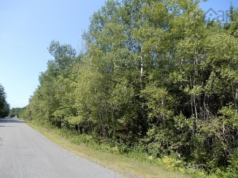 Main Photo: Lot West River Drive in Durham: 108-Rural Pictou County Vacant Land for sale (Northern Region)  : MLS®# 202122246