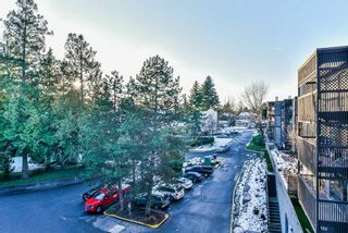 "Photo 17: 502 9672 134 Street in Surrey: Whalley Condo for sale in ""Parkswood (Dogwood Building)"" (North Surrey)  : MLS®# R2230294"