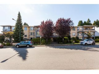 Photo 1: 200 1459 BLACKWOOD Street: White Rock Condo for sale (South Surrey White Rock)  : MLS®# R2491056