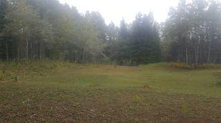"Photo 10: LOT 8 BRYANSTON Drive in Burns Lake: Burns Lake - Rural South Land for sale in ""NORALEE ESTATES"" (Burns Lake (Zone 55))  : MLS®# R2471190"