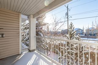Photo 33: 1204 11 Chaparral Ridge Drive SE in Calgary: Chaparral Apartment for sale : MLS®# A1066729