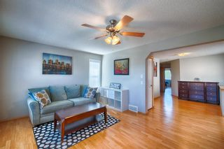 Photo 16: 272 Kincora Drive NW in Calgary: Kincora Detached for sale : MLS®# A1149884