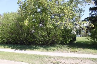 Photo 2: 5124 52 Ave: Tofield Vacant Lot for sale : MLS®# E4214857