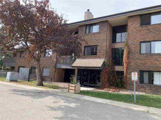 Photo 1: 321 14819 51 Avenue in Edmonton: Zone 14 Condo for sale : MLS®# E4246099