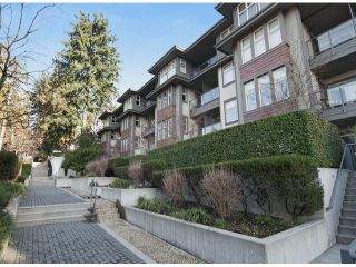 Photo 20: # 304 188 W 29TH ST in North Vancouver: Upper Lonsdale Condo for sale : MLS®# V1043206