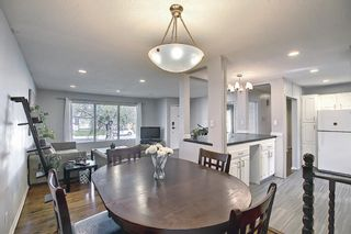 Photo 9: 9819 2 Street SE in Calgary: Acadia Detached for sale : MLS®# A1112448