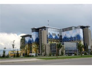 Photo 15: 6 AUBURN CREST Place SE in Calgary: Auburn Bay House for sale : MLS®# C4075345