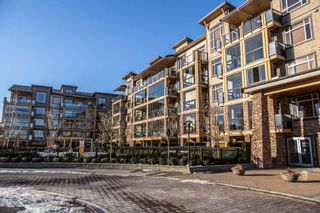 """Photo 20: 554 8258 207A Street in Langley: Willoughby Heights Condo for sale in """"Yorkson Creek"""" : MLS®# R2131464"""