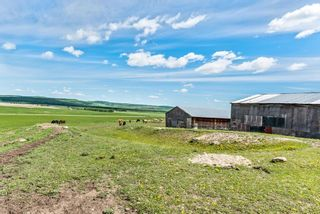 Photo 40: 386091 112 Street: Rural Foothills County Detached for sale : MLS®# C4301628