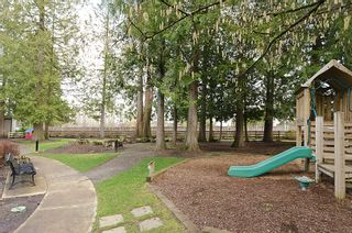 """Photo 28: 84 20875 80TH Avenue in Langley: Willoughby Heights Townhouse for sale in """"PEPPERWOOD"""" : MLS®# F1203721"""