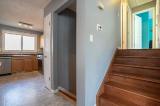 Photo 18: 51 ALPINE Boulevard: St. Albert House for sale : MLS®# E4247886