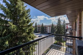 Photo 20: 301 679 St Anne's Road in Winnipeg: St Vital Condominium for sale (2E)  : MLS®# 202110259