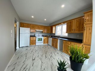 Photo 3: 425 Big Springs Drive SE: Airdrie Detached for sale : MLS®# A1087684