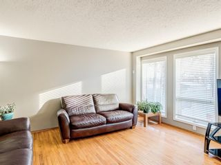 Photo 13: 9 Cambria Place: Strathmore Detached for sale : MLS®# A1051462
