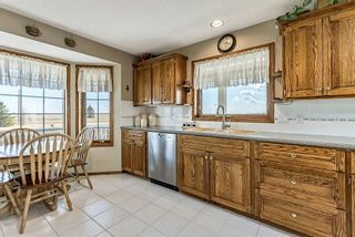 Photo 13: 253185 RGE RD 275 in Rural Rocky View County: Rural Rocky View MD Detached for sale : MLS®# C4236387