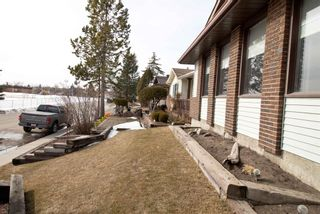 Photo 39: 76 Templeby Drive in Calgary: Temple Detached for sale : MLS®# A1077458