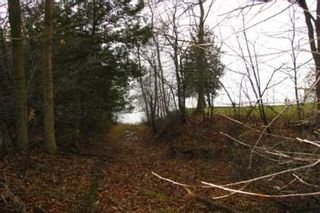 Photo 4: L11 Maple Beach Road in Beaverton: Freehold for sale (N24: BEAVERTON)  : MLS®# N1745968