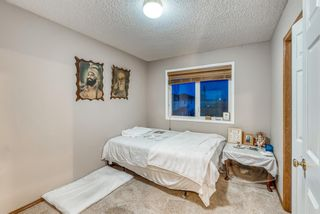Photo 29: 232 Coral Shores Court NE in Calgary: Coral Springs Detached for sale : MLS®# A1081911