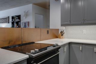 Photo 10: 314 339 13 Avenue SW in Calgary: Beltline Apartment for sale : MLS®# A1067563