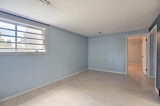 Photo 18: 6163 Bowwood Drive NW in Calgary: Bowness Detached for sale : MLS®# A1116947