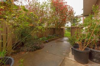 Photo 23: 6 4350 West Saanich Rd in VICTORIA: SW Royal Oak Row/Townhouse for sale (Saanich West)  : MLS®# 813072