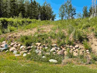Photo 35: 240071 Twp Rd 623: Rural Athabasca County House for sale : MLS®# E4258025