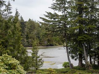 Photo 31: 1230 Pacific Rim Hwy in TOFINO: PA Tofino House for sale (Port Alberni)  : MLS®# 837426