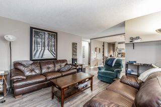 Photo 8: 260 Van Horne Crescent NE in Calgary: Vista Heights Detached for sale : MLS®# A1144476