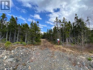 Photo 3: 0 New World Island Forestry Access Road in Summerford: Vacant Land for sale : MLS®# 1229207