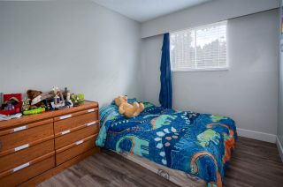 Photo 7: 22918 EAGLE Avenue in Maple Ridge: East Central House for sale : MLS®# R2121887