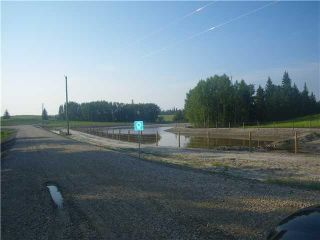 Photo 6: 314 55504 Rge Rd 13: Rural Lac Ste. Anne County Rural Land/Vacant Lot for sale : MLS®# E4213581