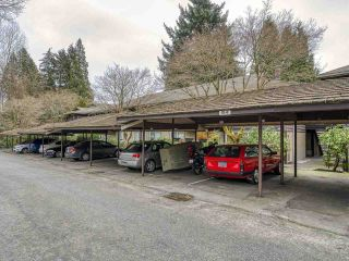 """Photo 21: 409 555 W 28TH Street in North Vancouver: Upper Lonsdale Condo for sale in """"Cedarbrooke Village"""" : MLS®# R2555453"""