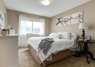 Photo 25: 481 Evanston Drive NW in Calgary: Evanston Detached for sale : MLS®# A1126574
