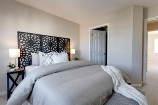 Photo 15: 169 Copperfield Lane SE in Calgary: Copperfield Row/Townhouse for sale : MLS®# A1152368