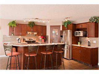 Photo 7: 48 COUGARSTONE Court SW in Calgary: Cougar Ridge House for sale : MLS®# C4045394